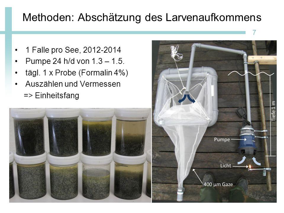 Methoden: Abschätzung Besatzanteil am Sacrower See Besatz mit 5000 markierten Larven/ha seit 2009 Larven für 3-4 h in 150 mg/l Alizarin Rot (Eckmann 1998) Otolithen entnehmen, schleifen und Epifluoreszenzmikroskopie 8