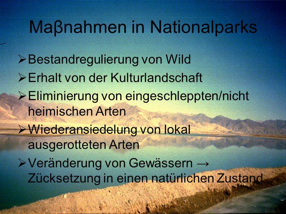 Maβnahmen in Nationalparks  Bestandregulierung von Wild  Erhalt von der Kulturlandschaft  Eliminierung von eingeschleppten/nicht heimischen Arten 