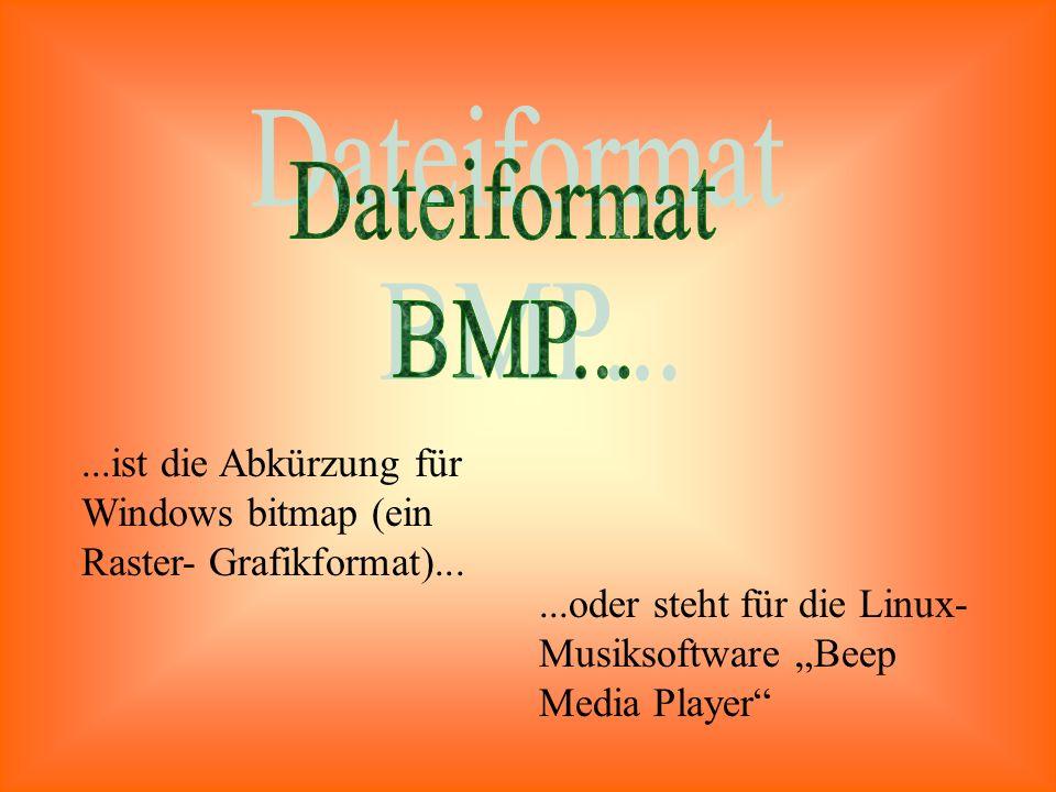 """...ist die Abkürzung für Windows bitmap (ein Raster- Grafikformat)......oder steht für die Linux- Musiksoftware """"Beep Media Player"""