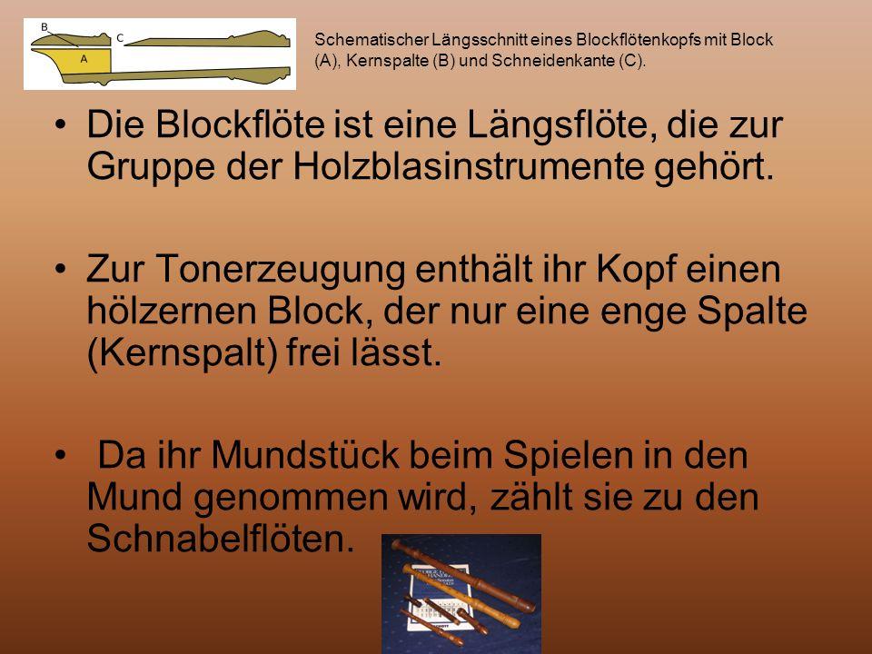 Die Blockflöte ist eine Längsflöte, die zur Gruppe der Holzblasinstrumente gehört. Zur Tonerzeugung enthält ihr Kopf einen hölzernen Block, der nur ei