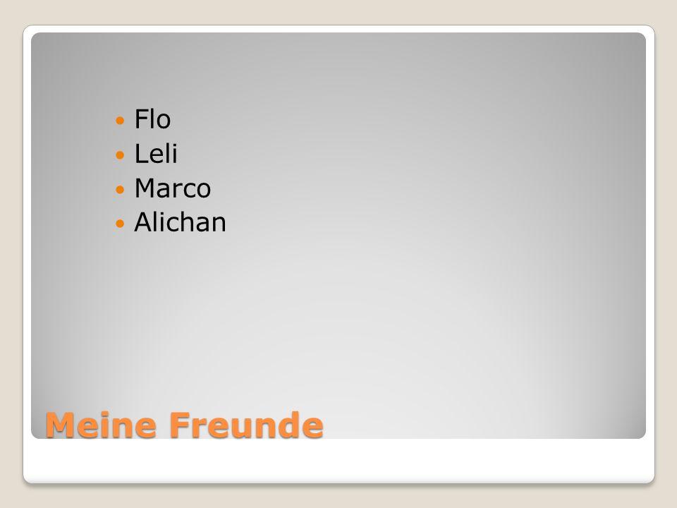 Meine Freunde Flo Leli Marco Alichan