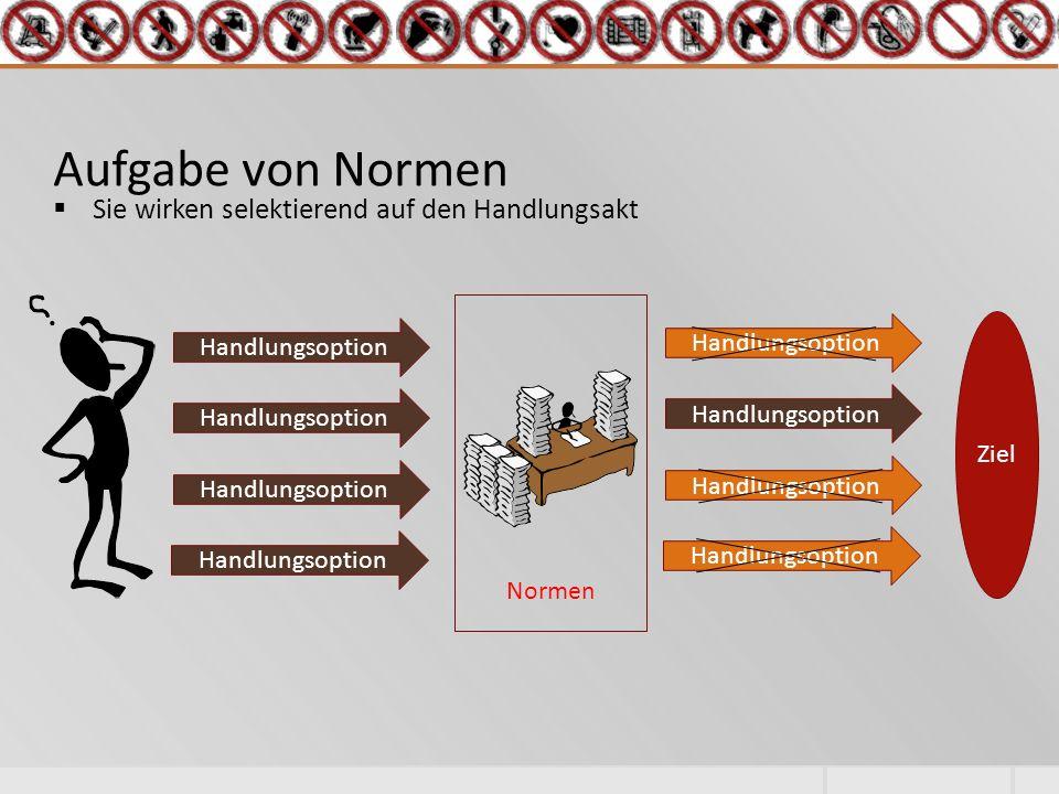 Aufgabe von Normen  Sie wirken selektierend auf den Handlungsakt Ziel Handlungsoption Normen Handlungsoption