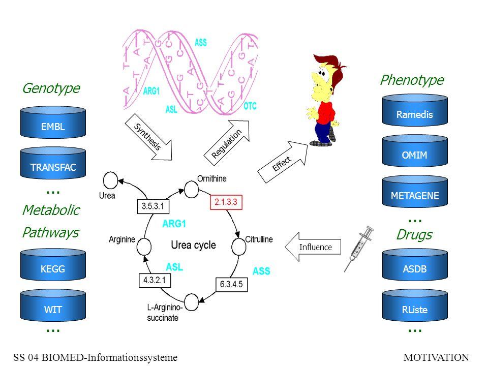 I – Anstieg in MEDLINEII – Anzahl Transistoren/Chip III – GenBank EinträgeIV – Wachstum PDB (3D) SS 04 BIOMED-InformationssystemeMOTIVATION