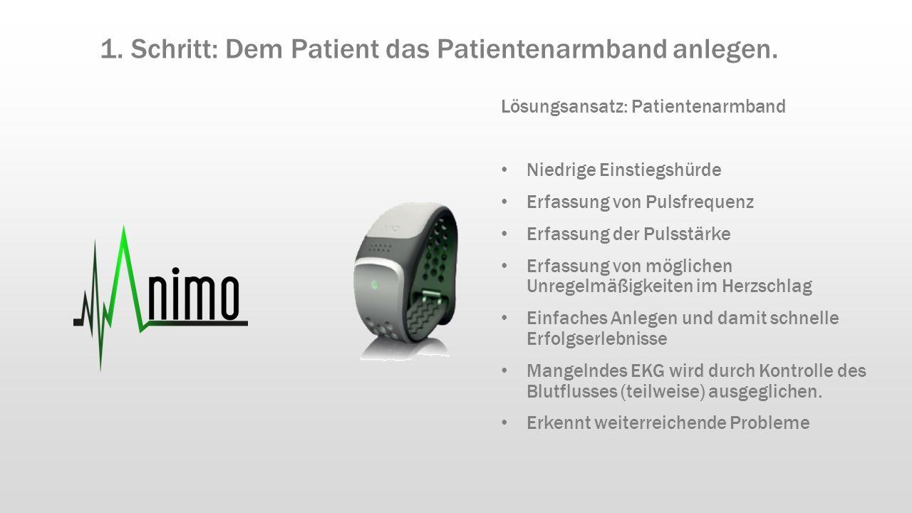 Lösungsansatz: Patientenarmband Niedrige Einstiegshürde Erfassung von Pulsfrequenz Erfassung der Pulsstärke Erfassung von möglichen Unregelmäßigkeiten