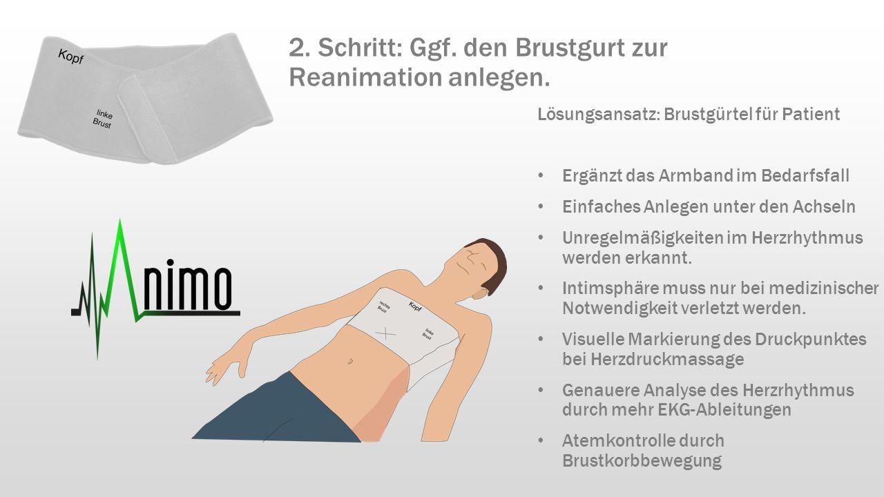 Lösungsansatz: Brustgürtel für Patient Ergänzt das Armband im Bedarfsfall Einfaches Anlegen unter den Achseln Unregelmäßigkeiten im Herzrhythmus werde