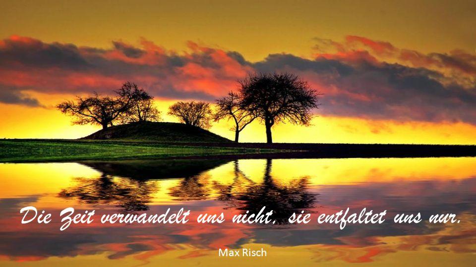 Die Zeit verwandelt uns nicht, sie entfaltet uns nur. Max Risch