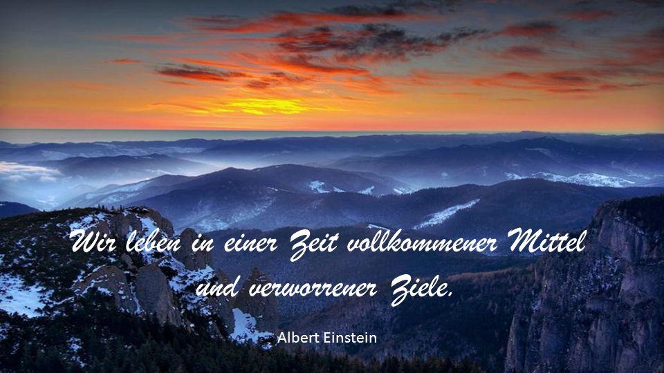Wir leben in einer Zeit vollkommener Mittel und verworrener Ziele. Albert Einstein