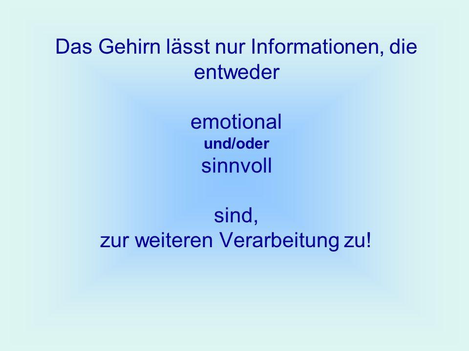 Das Gehirn lässt nur Informationen, die entweder emotional und/oder sinnvoll sind, zur weiteren Verarbeitung zu!