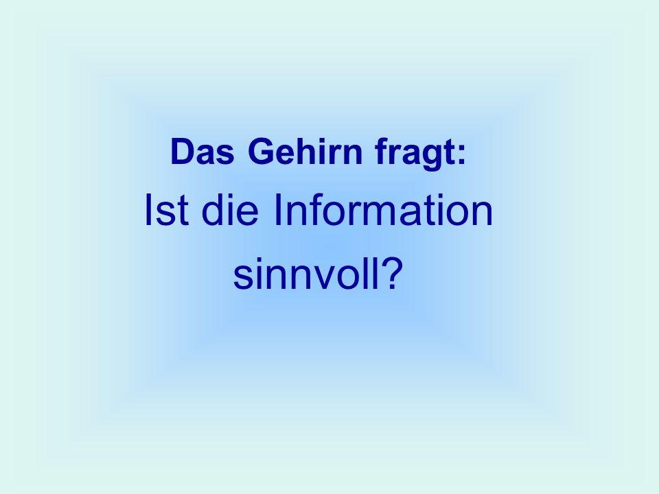 Das Gehirn fragt: Ist die Information sinnvoll?