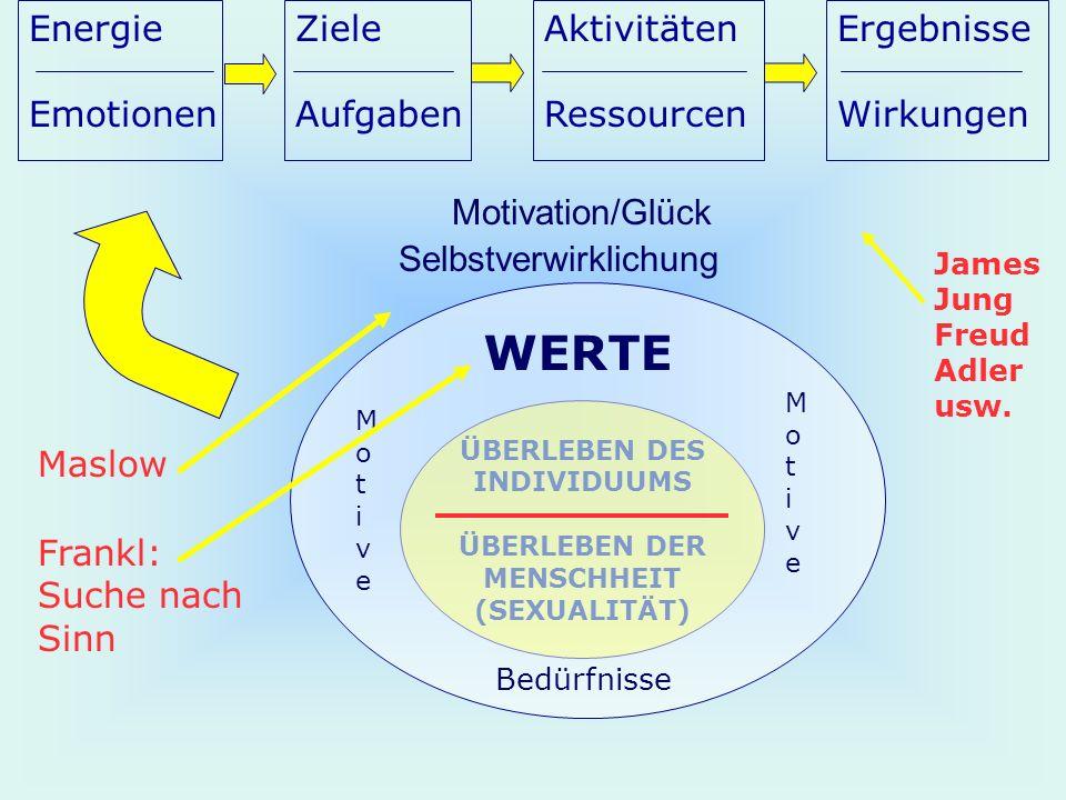 ÜBERLEBEN DES INDIVIDUUMS ÜBERLEBEN DER MENSCHHEIT (SEXUALITÄT) Motivation/Glück Selbstverwirklichung Bedürfnisse MotiveMotive MotiveMotive WERTE Ener