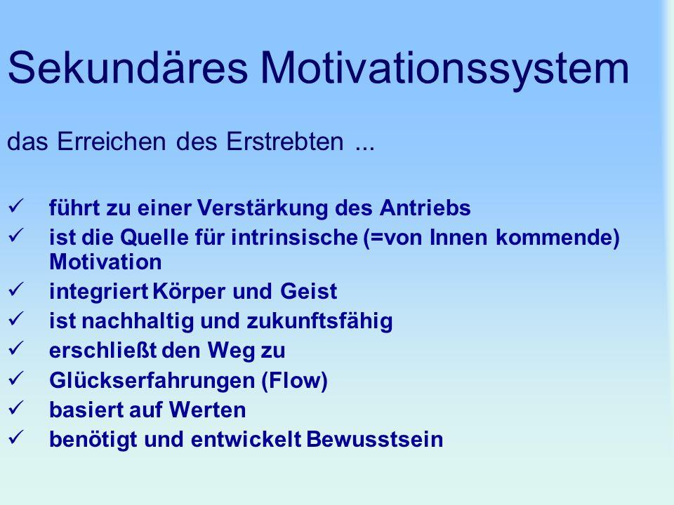 Sekundäres Motivationssystem das Erreichen des Erstrebten... führt zu einer Verstärkung des Antriebs ist die Quelle für intrinsische (=von Innen komme