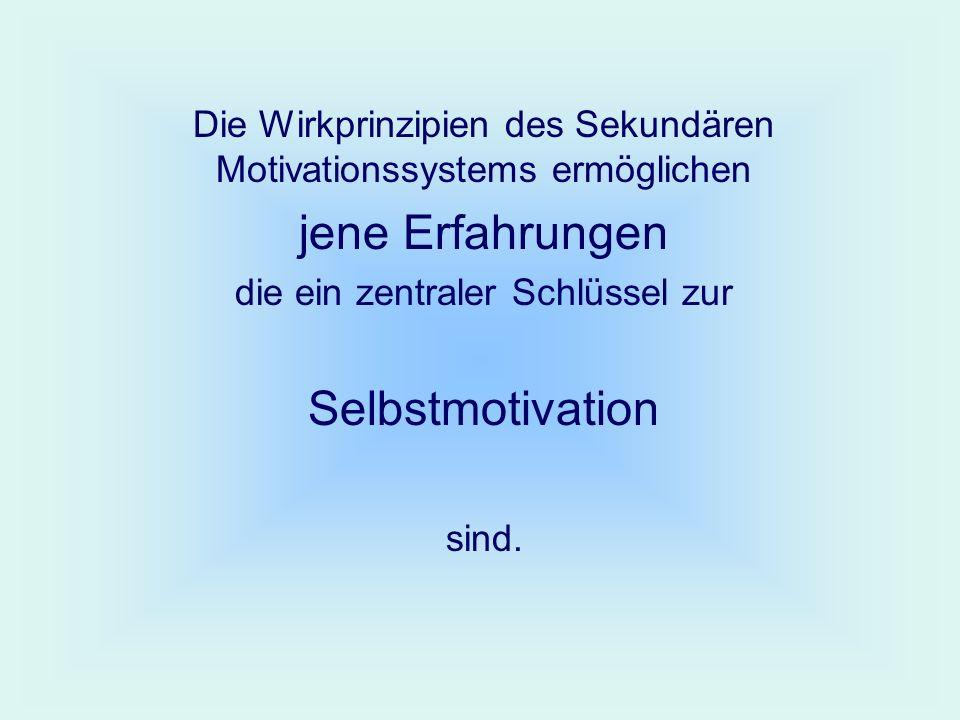 Die Wirkprinzipien des Sekundären Motivationssystems ermöglichen jene Erfahrungen die ein zentraler Schlüssel zur Selbstmotivation sind.
