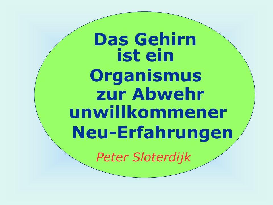 Das Gehirn ist ein Organismus zur Abwehr unwillkommener Neu-Erfahrungen Peter Sloterdijk