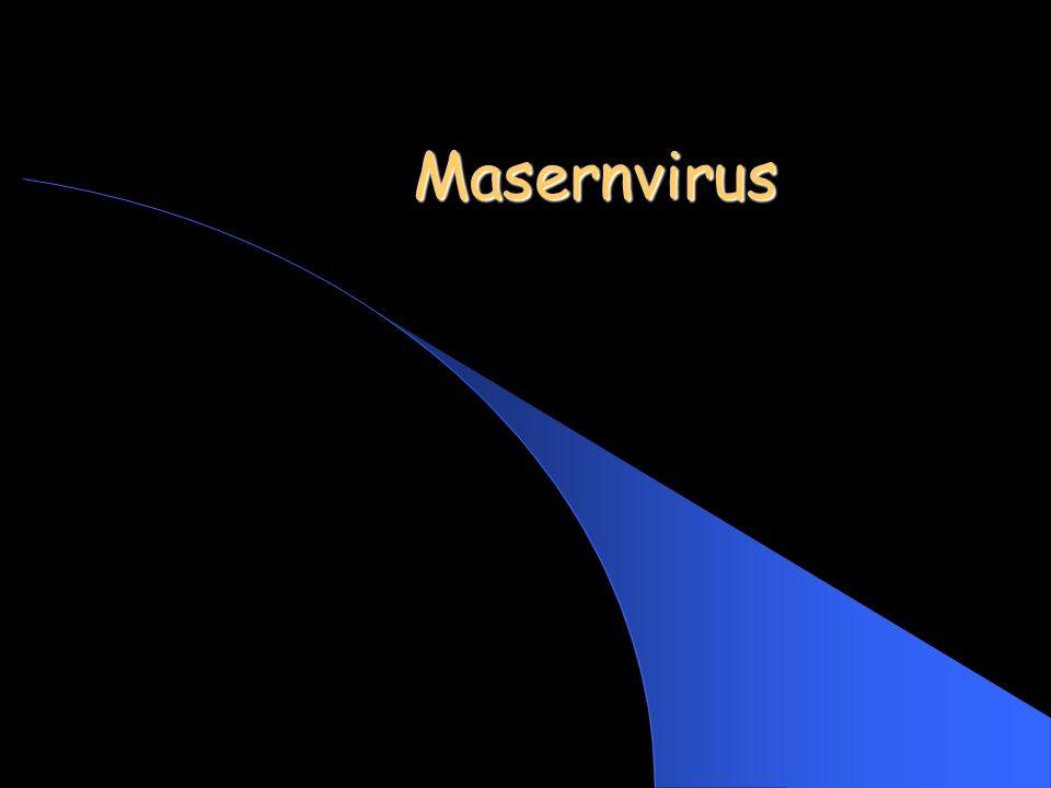Masernvirus