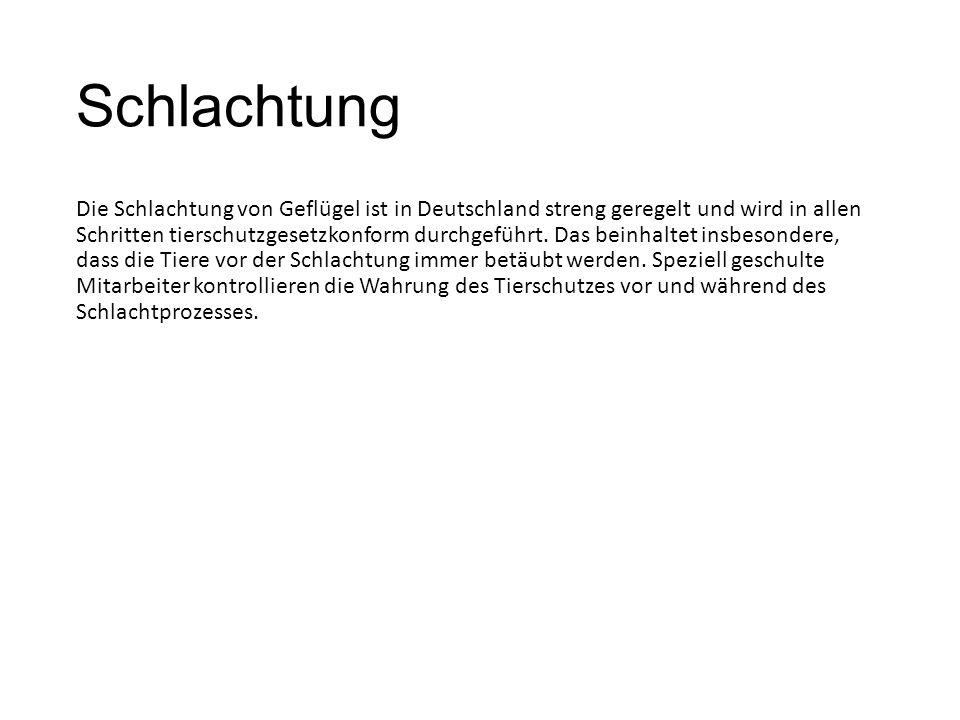 Schlachtung Die Schlachtung von Geflügel ist in Deutschland streng geregelt und wird in allen Schritten tierschutzgesetzkonform durchgeführt.