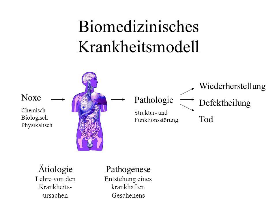 Probleme des Biomedizinischen Krankheitsmodells Bei vielen Erkrankungen gibt es keine eindeutigen Noxen, sondern multiple Risiken (z.B.