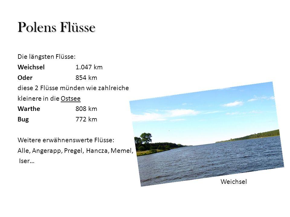 Polens Flüsse Die längsten Flüsse: Weichsel1.047 km Oder854 km diese 2 Flüsse münden wie zahlreiche kleinere in die Ostsee Warthe808 km Bug772 km Weit