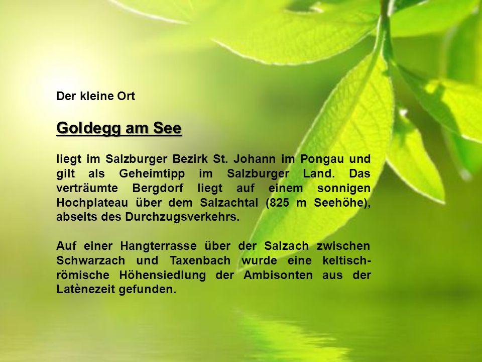 Der kleine Ort Goldegg am See liegt im Salzburger Bezirk St.