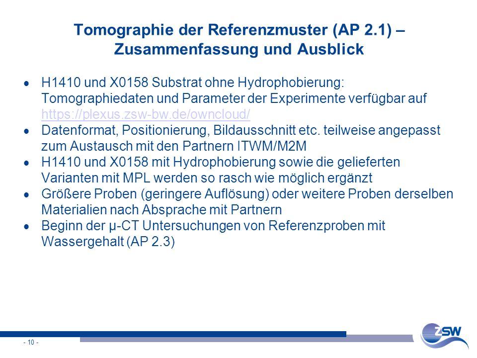 - 10 - Tomographie der Referenzmuster (AP 2.1) – Zusammenfassung und Ausblick  H1410 und X0158 Substrat ohne Hydrophobierung: Tomographiedaten und Pa