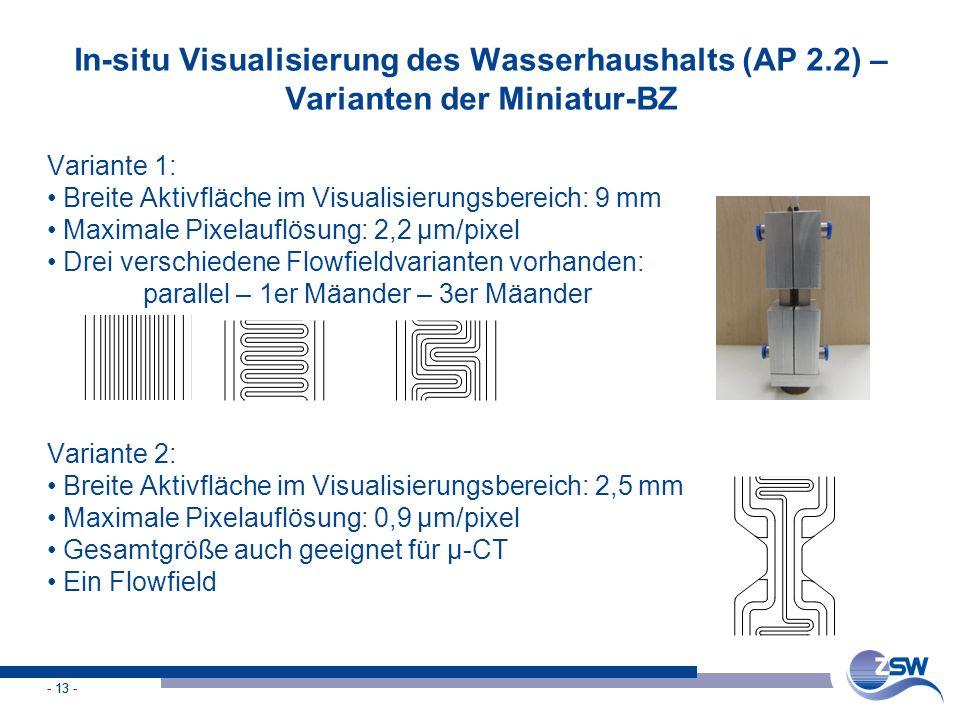 - 13 - In-situ Visualisierung des Wasserhaushalts (AP 2.2) – Varianten der Miniatur-BZ Variante 1: Breite Aktivfläche im Visualisierungsbereich: 9 mm