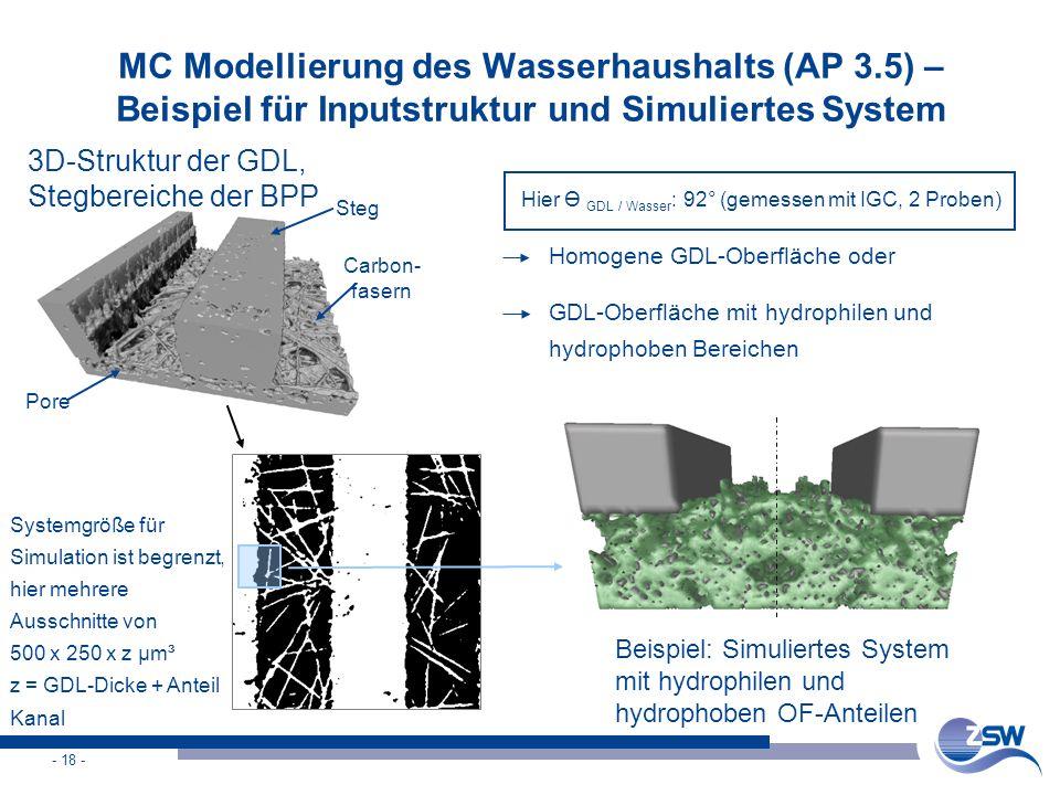 - 18 - MC Modellierung des Wasserhaushalts (AP 3.5) – Beispiel für Inputstruktur und Simuliertes System 3D-Struktur der GDL, Stegbereiche der BPP Syst