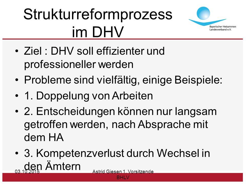 Strukturreformprozess im DHV Ziel : DHV soll effizienter und professioneller werden Probleme sind vielfältig, einige Beispiele: 1.