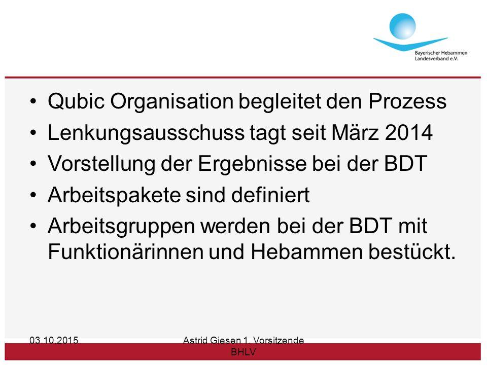Qubic Organisation begleitet den Prozess Lenkungsausschuss tagt seit März 2014 Vorstellung der Ergebnisse bei der BDT Arbeitspakete sind definiert Arbeitsgruppen werden bei der BDT mit Funktionärinnen und Hebammen bestückt.