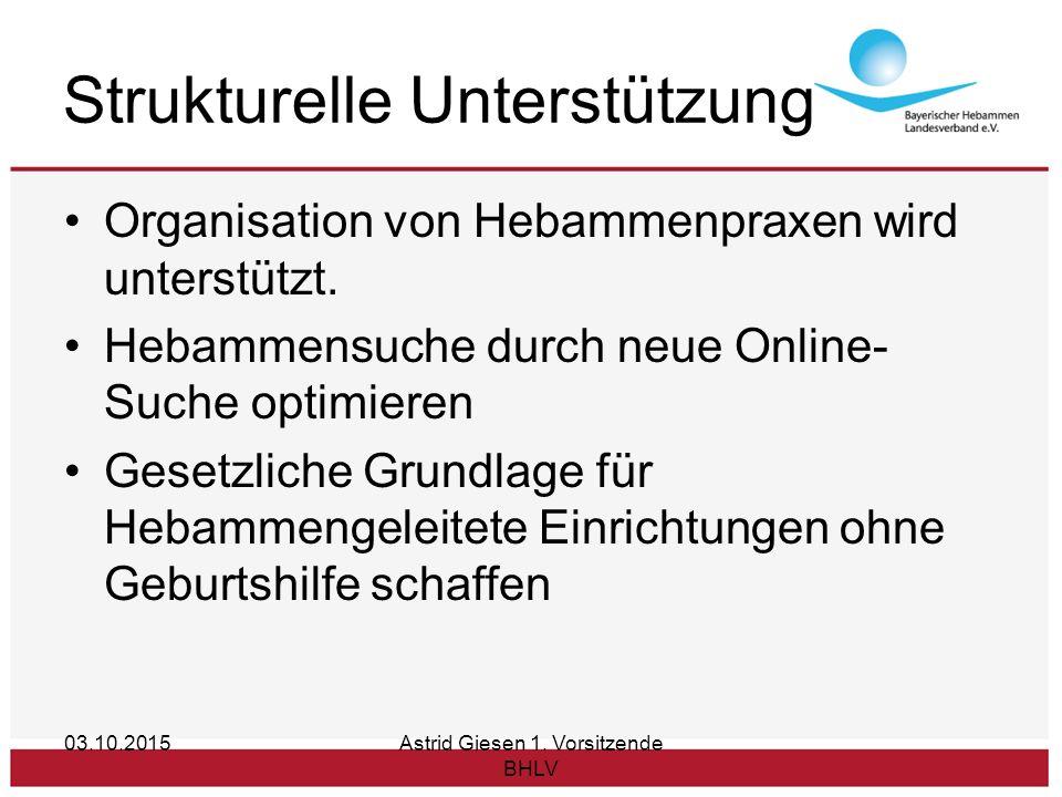 Strukturelle Unterstützung Organisation von Hebammenpraxen wird unterstützt.