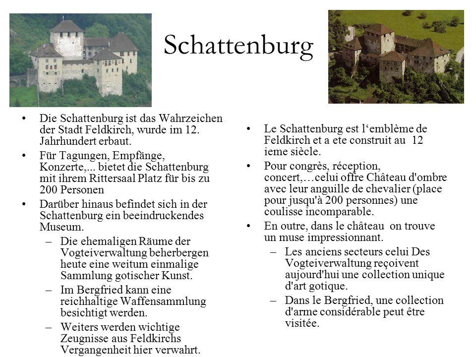Schattenburg Die Schattenburg ist das Wahrzeichen der Stadt Feldkirch, wurde im 12.