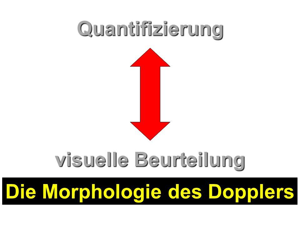 Quantifizierung visuelle Beurteilung Die Morphologie des Dopplers