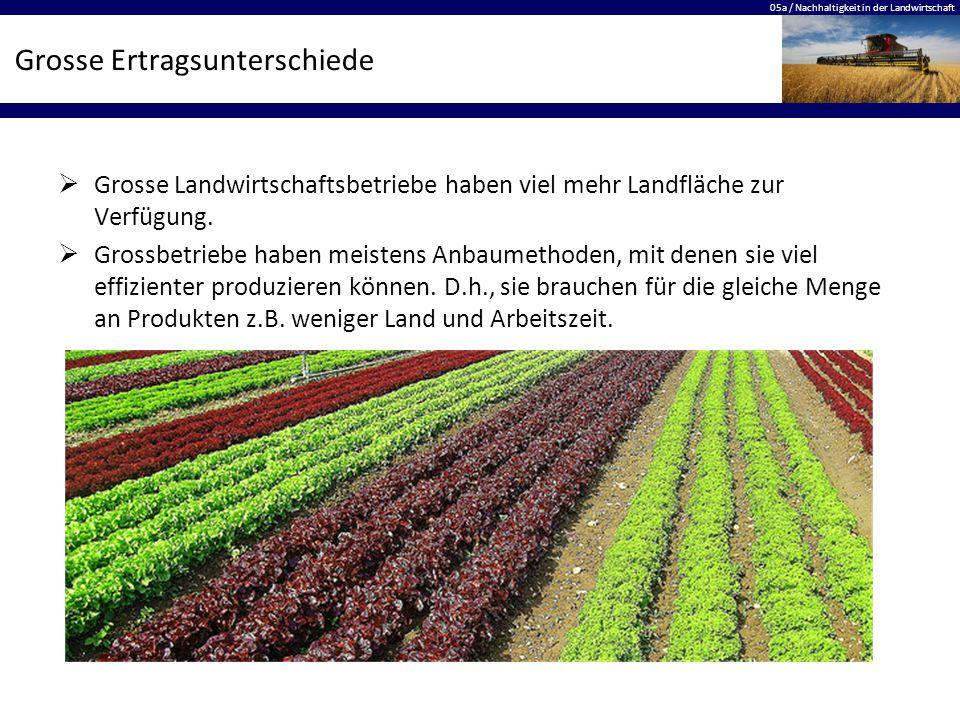 05a / Nachhaltigkeit in der Landwirtschaft Grosse Ertragsunterschiede  Grosse Landwirtschaftsbetriebe haben viel mehr Landfläche zur Verfügung.  Gro