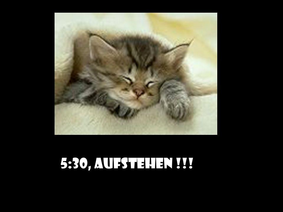5:30, AUFSTEHEN !!!