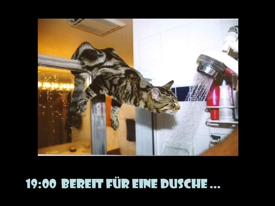 verteilt durch www.funmail2u.dewww.funmail2u.de 19:00 Bereit für eine Dusche...