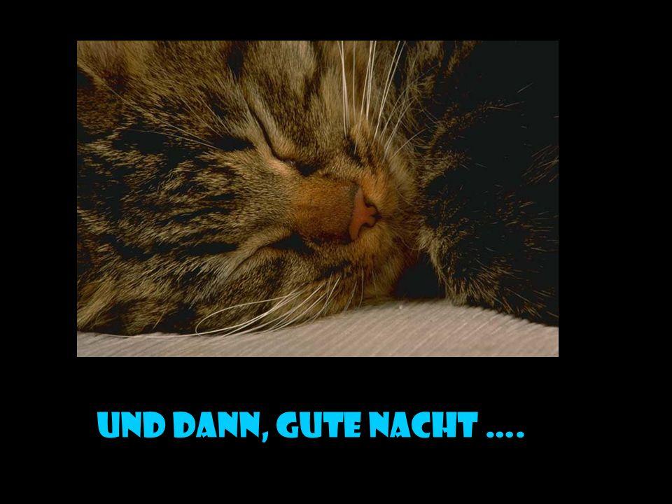 und dann, gute nacht ….