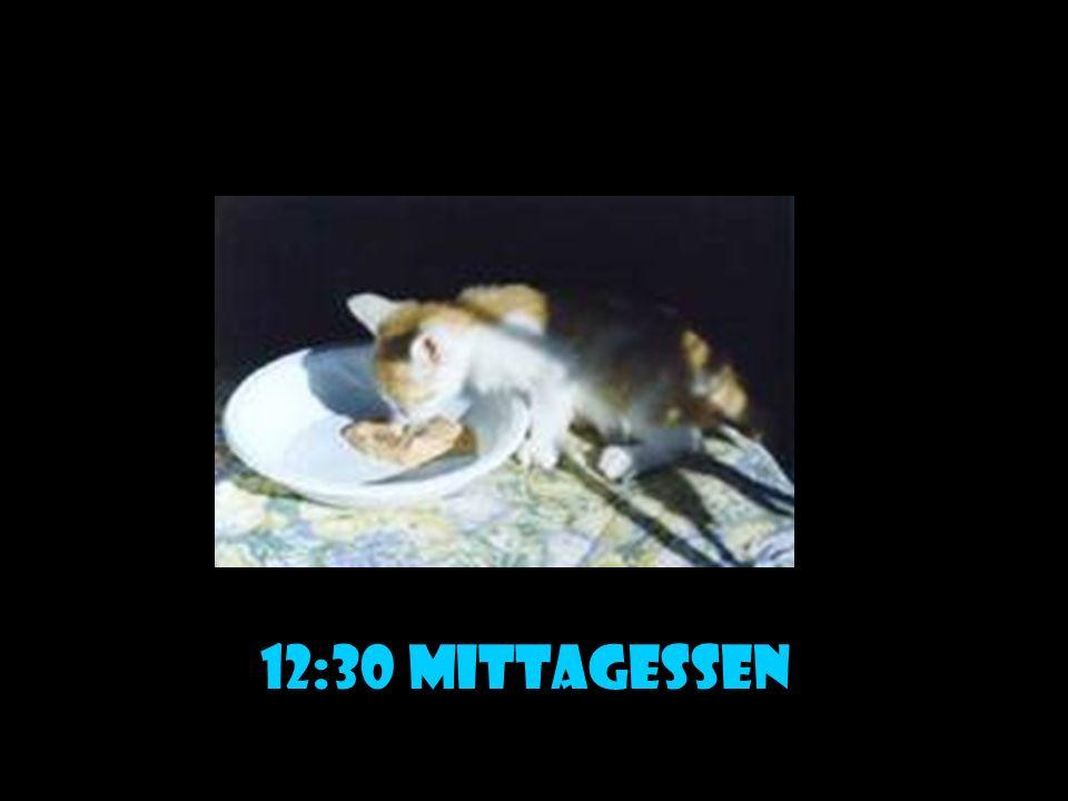 12:30 mittagessen