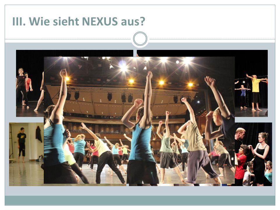 III. Wie sieht NEXUS aus