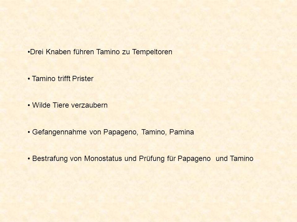 Drei Knaben führen Tamino zu Tempeltoren Tamino trifft Prister Wilde Tiere verzaubern Gefangennahme von Papageno, Tamino, Pamina Bestrafung von Monostatus und Prüfung für Papageno und Tamino
