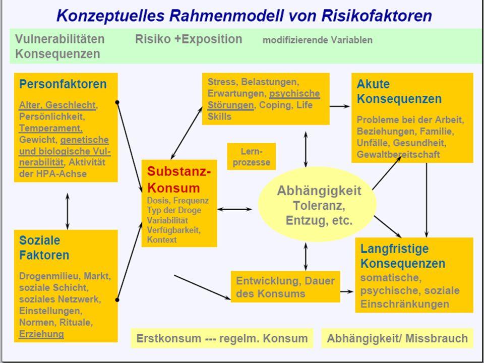 Karl C. Mayer www.neuro24.de