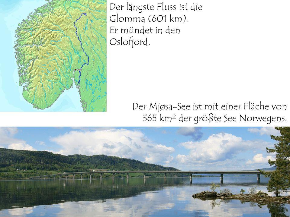 Der längste Fluss ist die Glomma (601 km). Er mündet in den Oslofjord. Der Mjøsa-See ist mit einer Fläche von 365 km² der größte See Norwegens.