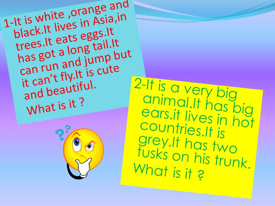 1-It is white,orange and black.It lives in Asia,in trees.It eats eggs.It has got a long tail.It can run and jump but it can't fly.It is cute and beaut