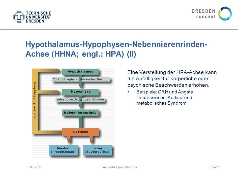 09.07.2015GesundheitspsychologieFolie 13 Hypothalamus-Hypophysen-Nebennierenrinden- Achse (HHNA; engl.: HPA) (II) Eine Verstellung der HPA-Achse kann