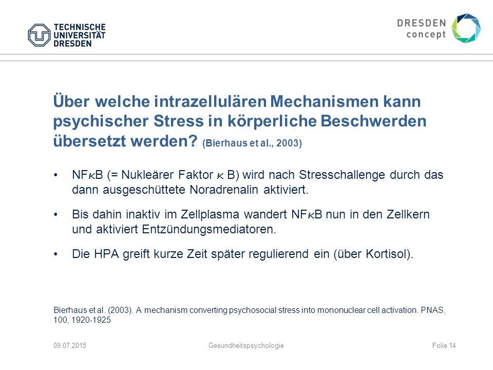 Über welche intrazellulären Mechanismen kann psychischer Stress in körperliche Beschwerden übersetzt werden? (Bierhaus et al., 2003) NF  B (= Nukleär