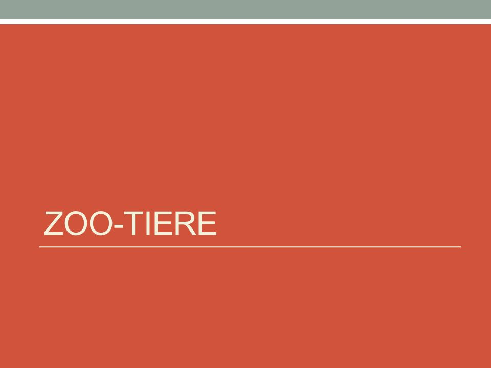 ZOO-TIERE