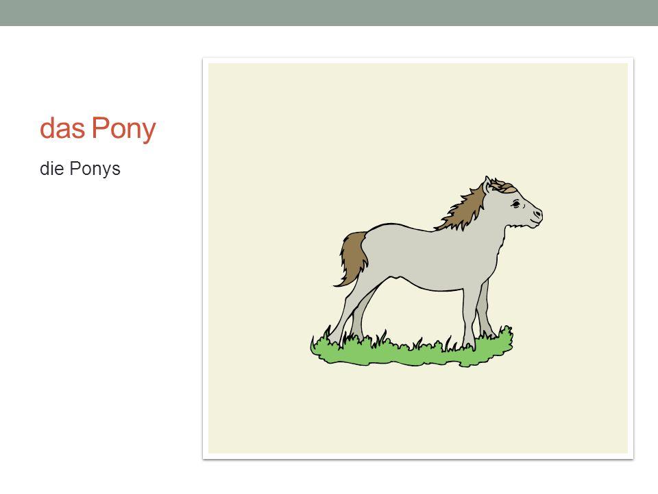 das Pony die Ponys