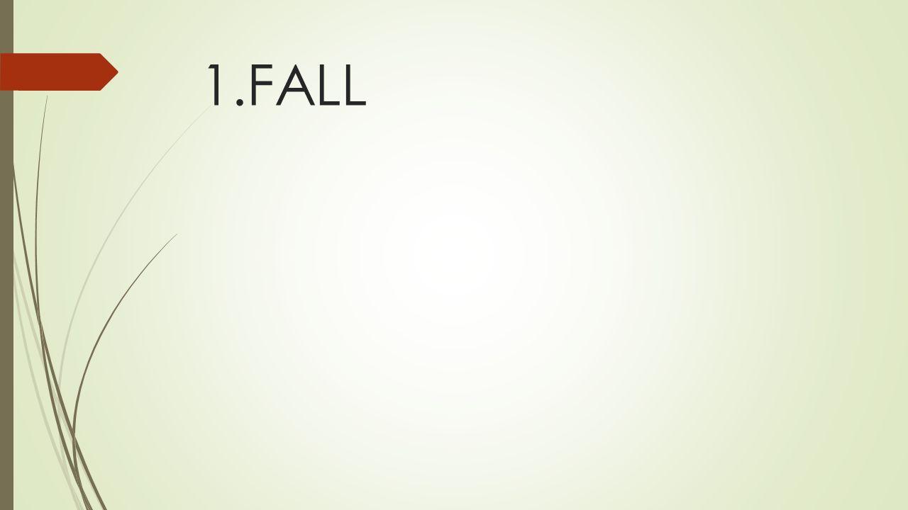 1.FALL