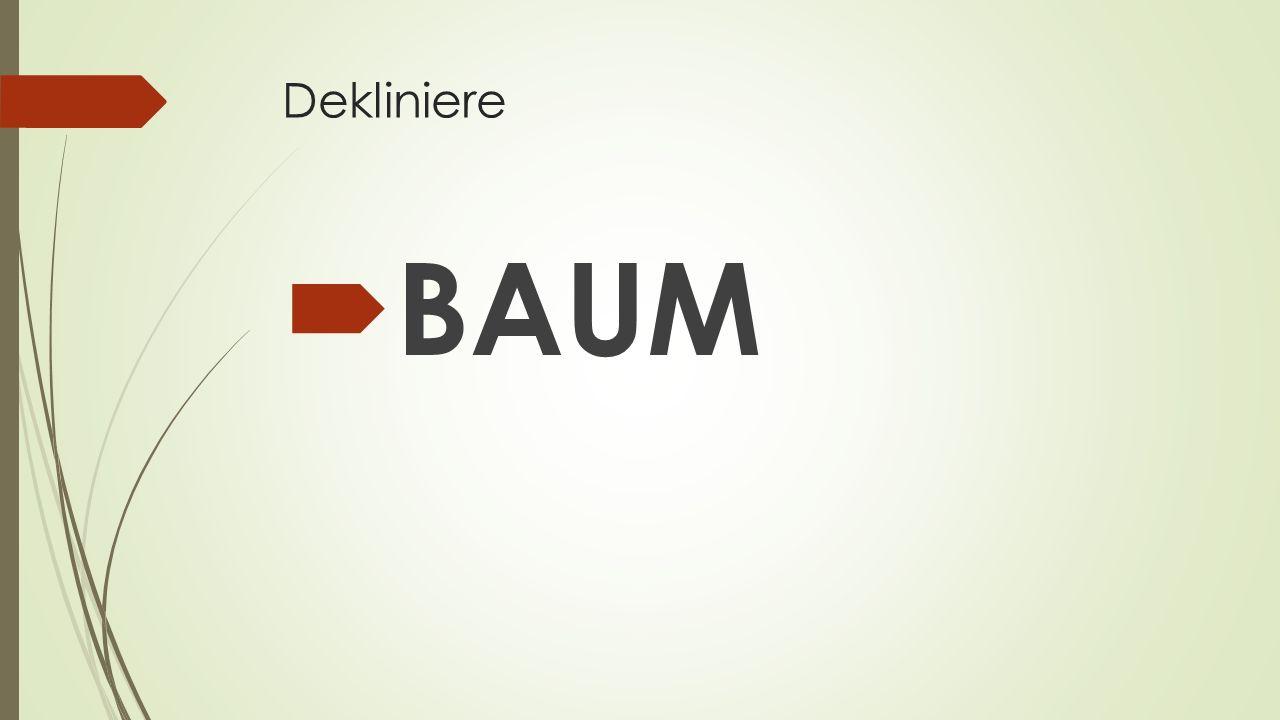 Dekliniere  BAUM