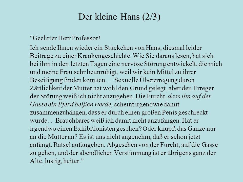 Der kleine Hans (2/3) Geehrter Herr Professor.