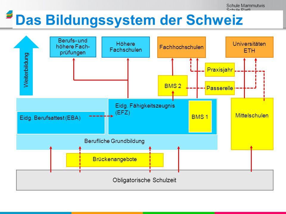 Schule Mammutwis Schule Rietli Schule Schmittenwis Schule Schleinikon Das Bildungssystem der Schweiz Obligatorische Schulzeit Mittelschulen Eidg.