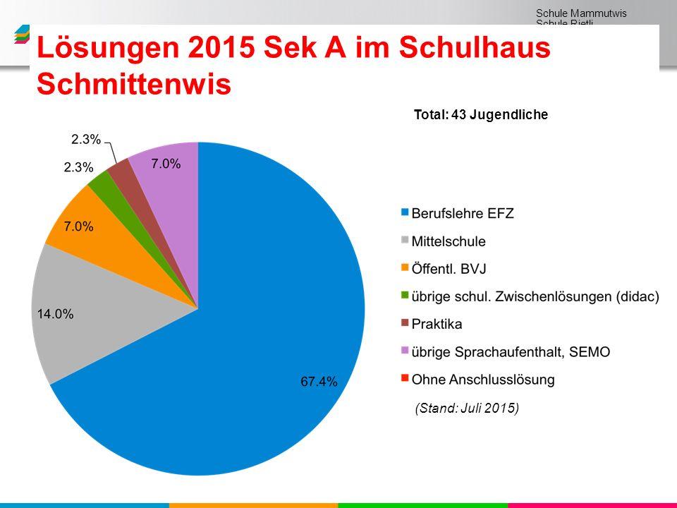 Schule Mammutwis Schule Rietli Schule Schmittenwis Schule Schleinikon Lösungen 2015 Sek A im Schulhaus Schmittenwis (Stand: Juli 2015) Total: 43 Jugendliche