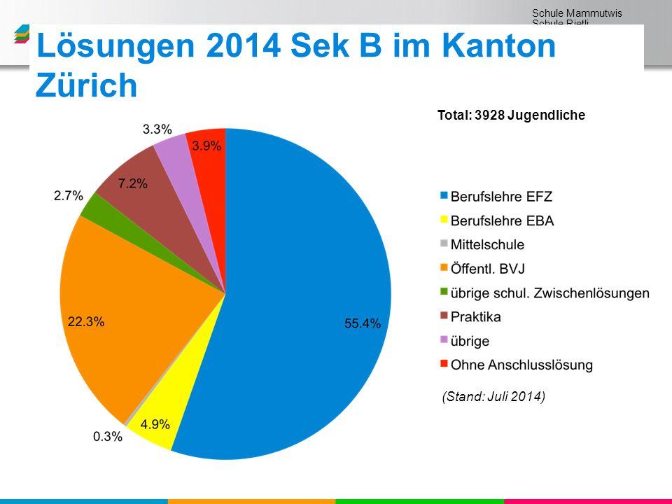 Schule Mammutwis Schule Rietli Schule Schmittenwis Schule Schleinikon (Stand: Juli 2014) Total: 3928 Jugendliche Lösungen 2014 Sek B im Kanton Zürich